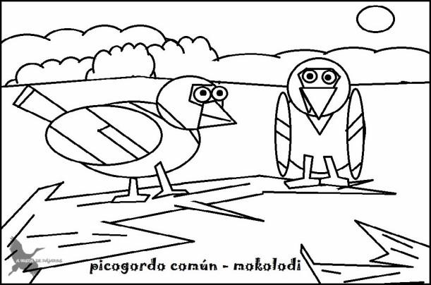 Picogordo b y n
