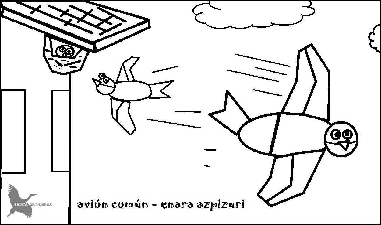 Vencejo, golondrina y avión « BioGeoMa