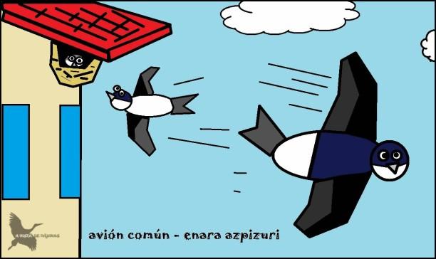 Avión común - Enara azpizuri