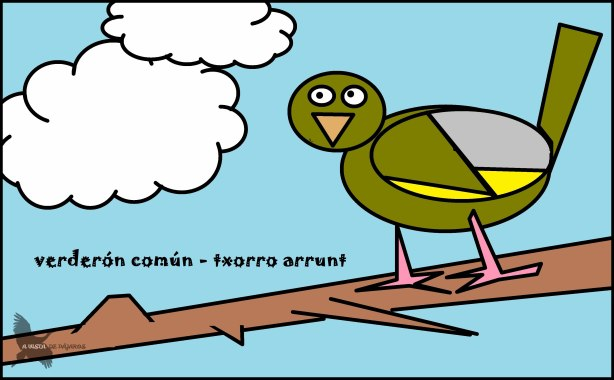 Verderón común - Txorro arrunt