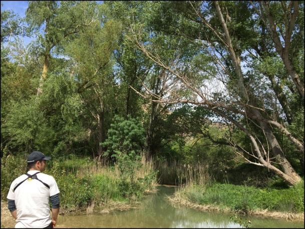 Mazki buscando en la ribera del río... Itziar Almarcegui (23-4-2016)