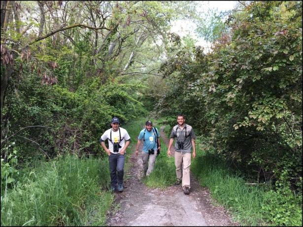 Caminando por las orillas del río; Itziar Almarcegui (23-4-2016)