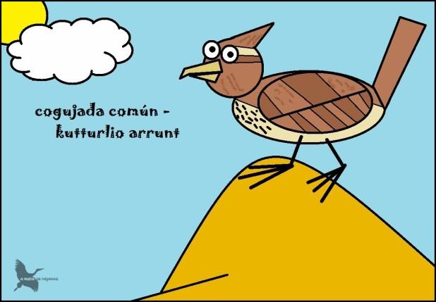 Cogujada común - Kutturlio arrunt