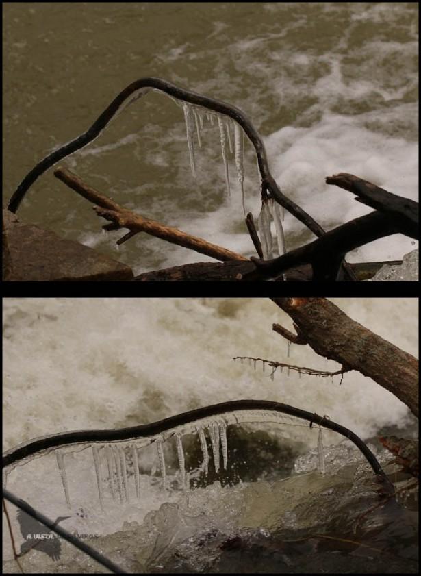 Carámbanos de hielo (17-1-2017)