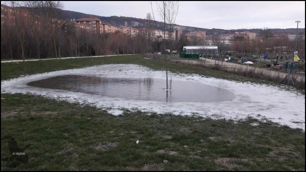 Zona de agua quedada tras la crecida del río y helada por completo (18-1-2017)