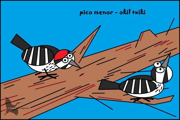 Pico menor - Okil txiki